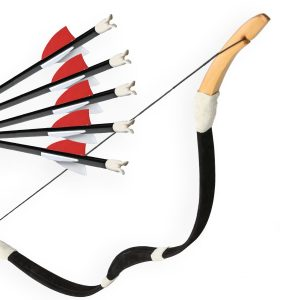Kit Horse Bow Archery Adult